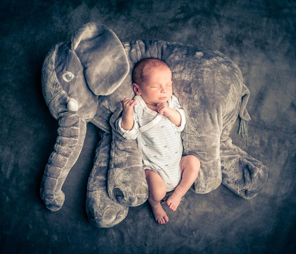 NEWBORN-aachen-babyfotos-dueren-neugeborenenfotos-alsdorf-babyfotograf-eschweiler-fotos-by-domi-23973052-2