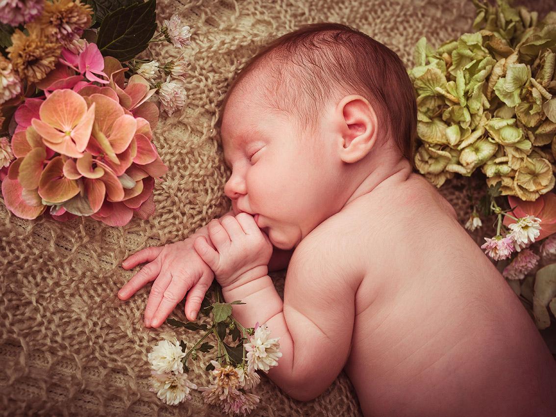 NEWBORN-aachen-babyfotos-dueren-neugeborenenfotos-alsdorf-babyfotograf-eschweiler-fotos-by-domi-270